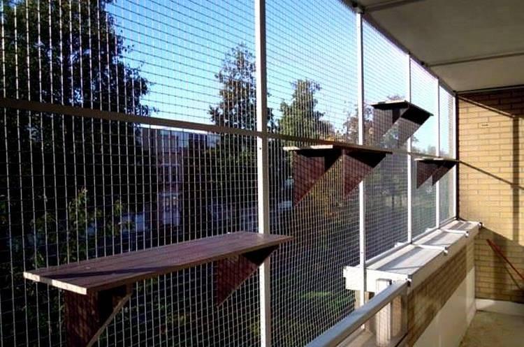 Сетки антикошка на окна, различные виды сеток антикошка, как.