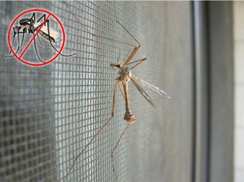 Рис. 6. Москитная сетка – барьер от насекомых